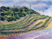 http://michaelmazer27.com/files/gimgs/th-35_napa_valley1__vineyard_800x600.jpg